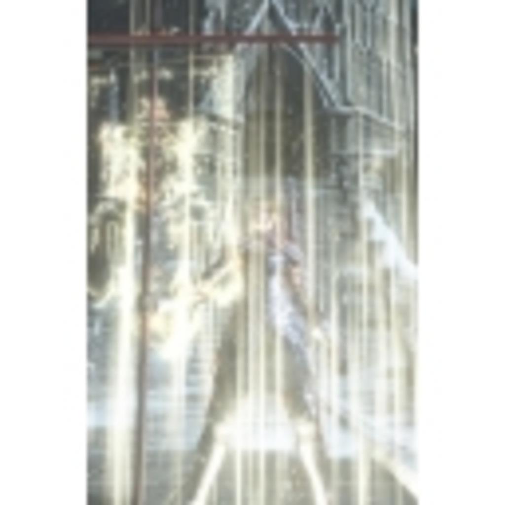 姫騎士ロスリック英雄譚