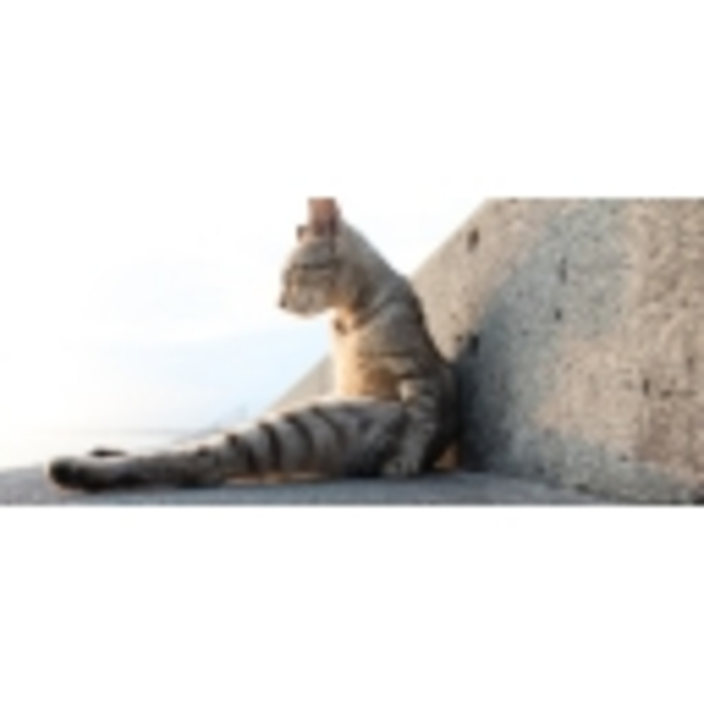 スーパー猫背人