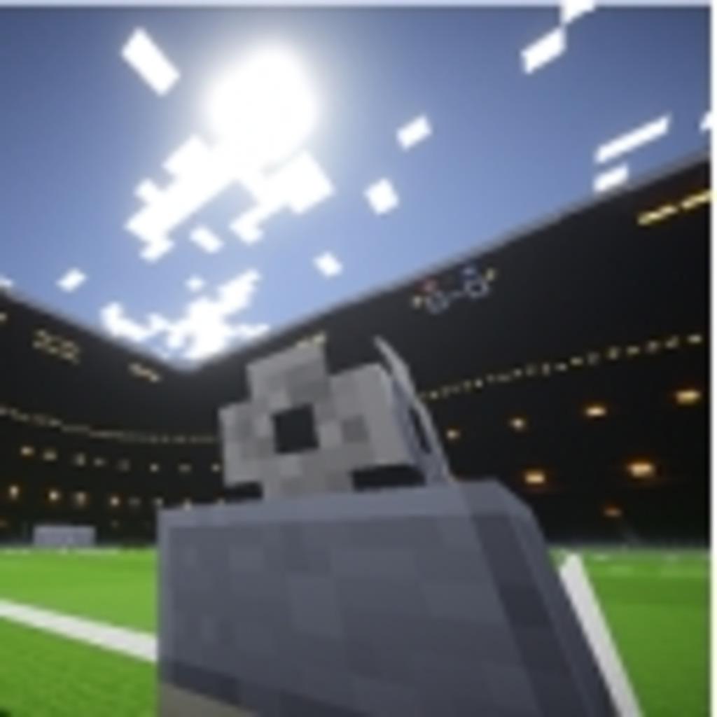 Minecraft Soccer Assosiation - マイクラサッカー協会 -