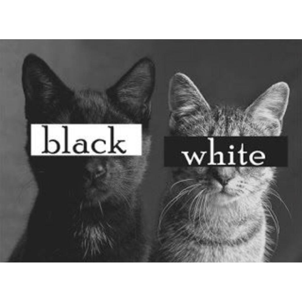 白黒ハンガーのNOW ON AIR