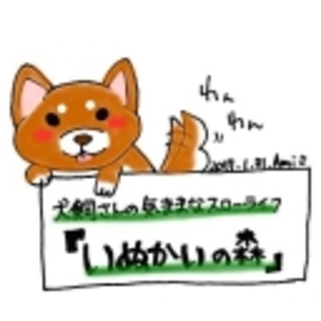 犬飼さんの気ままなスローライフ『 いぬかいの森 』