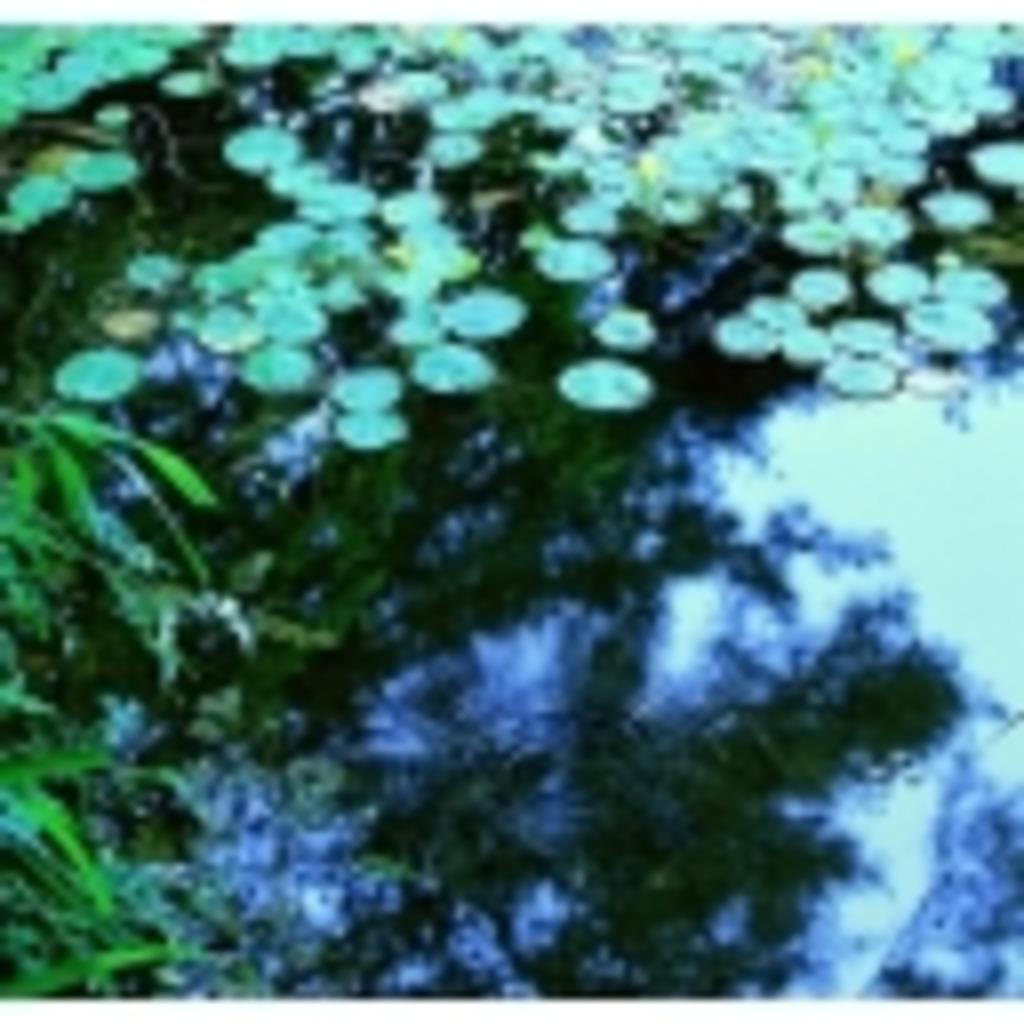 万里の貯水池(改名)