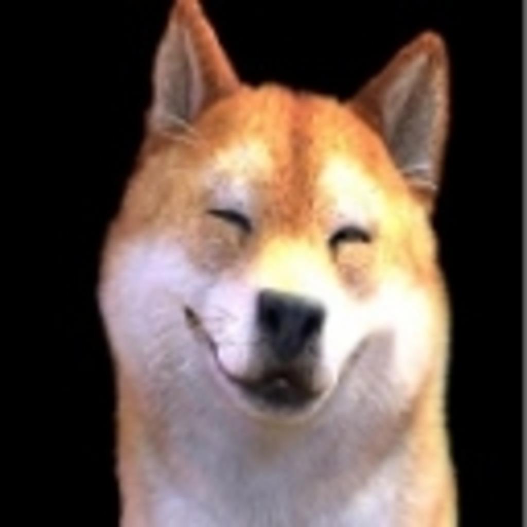 笑う犬の遊び場