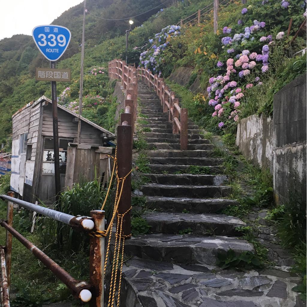 マリオ1ワープありRTA日本2位のコミュニティ