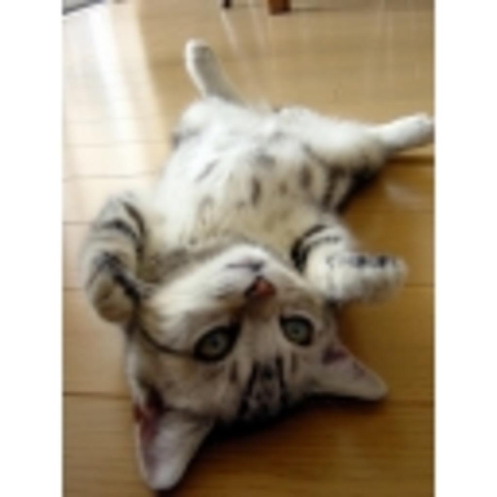 【モダン】MTGスカイプ凸対戦