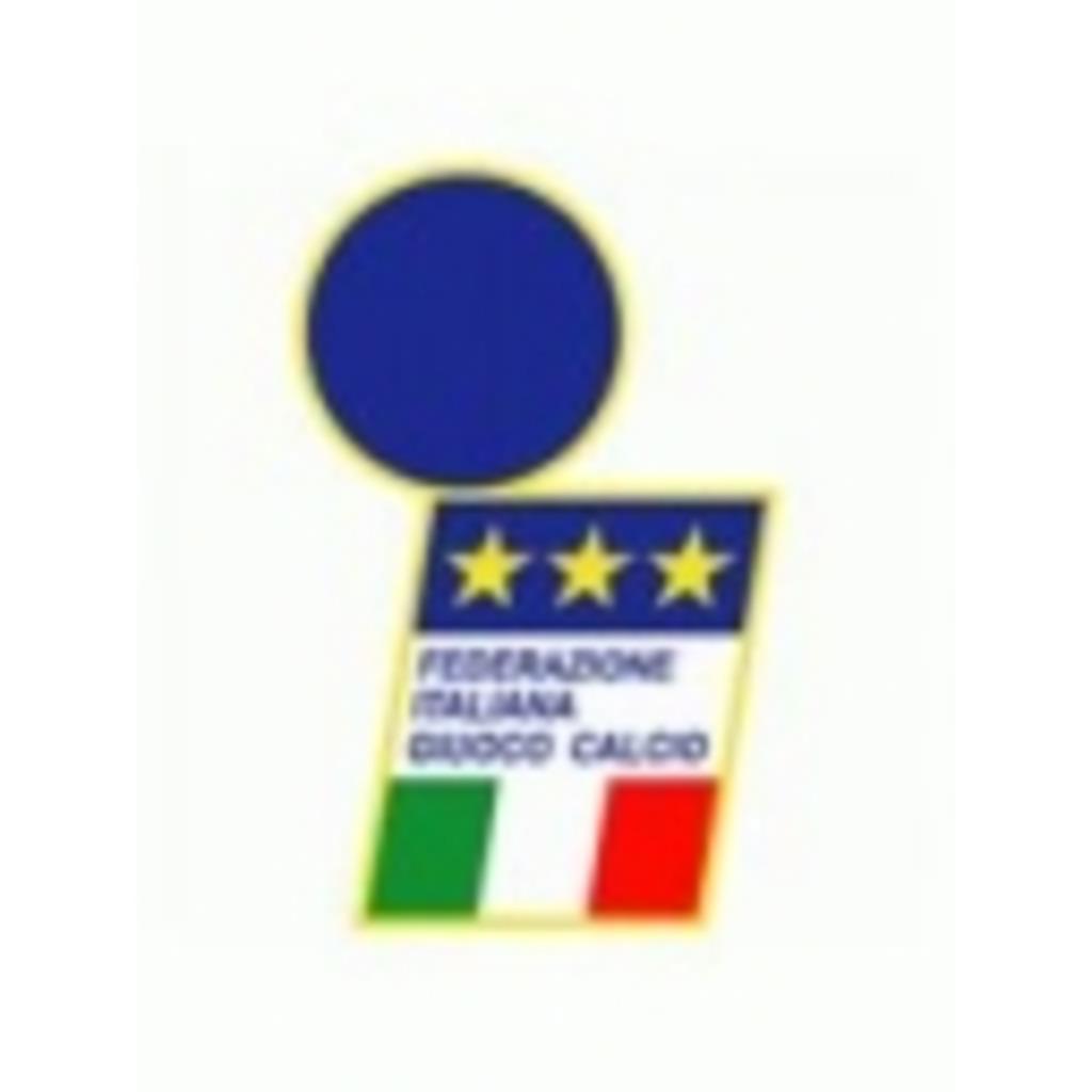 【カルチョ】サッカーと言えばセリエ【イタリア】