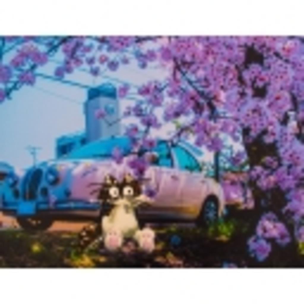 にゃんこと旅するアーティストSayaka
