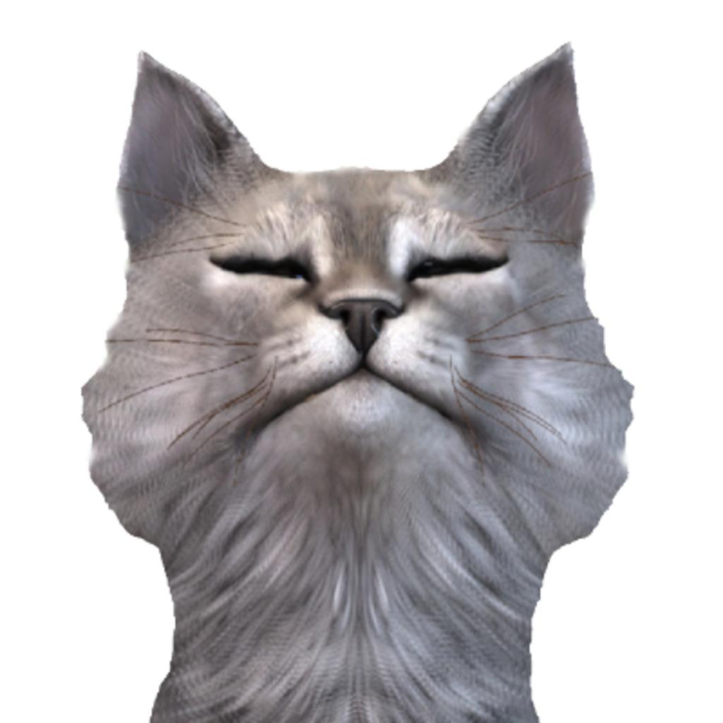 猫名タビビトは猫である