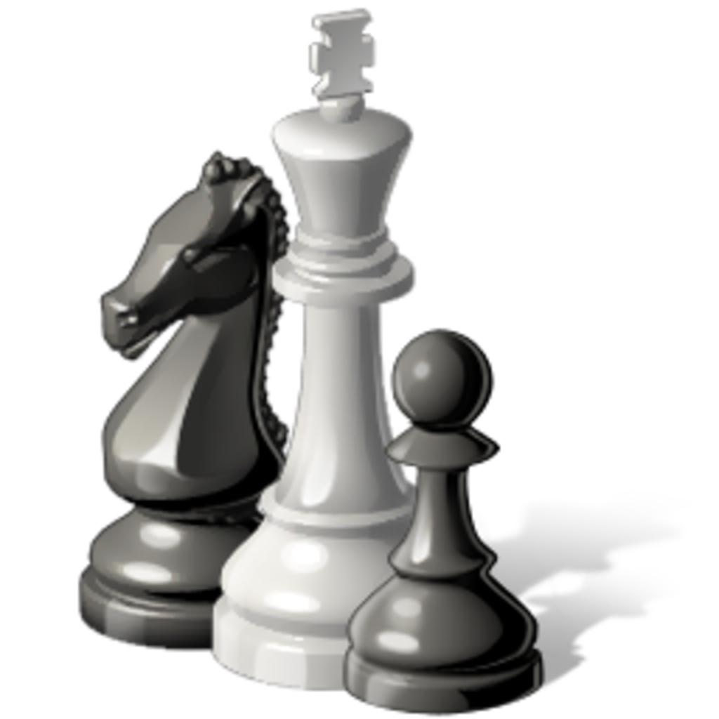 Please teach me chess&English! I am a beginner&shogi