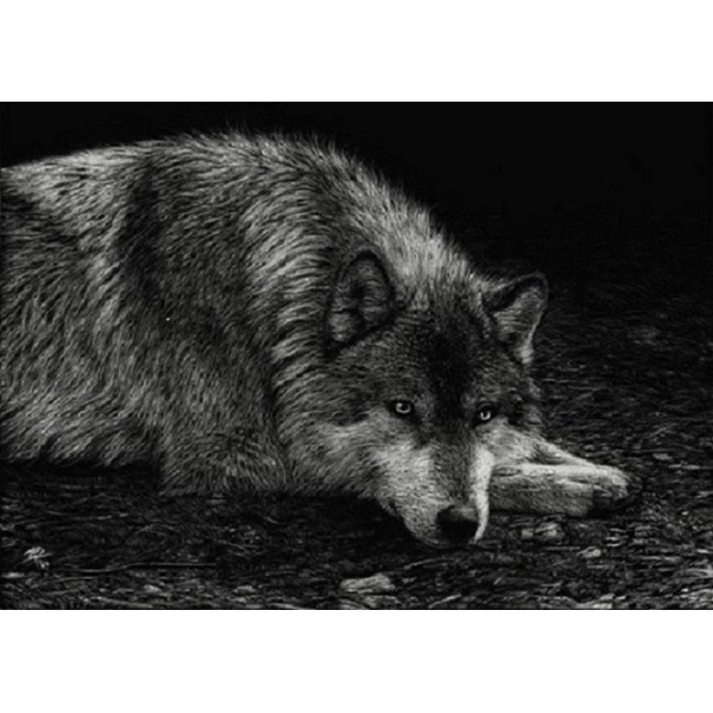 名無し募集中。。。シンタロウ(狼)