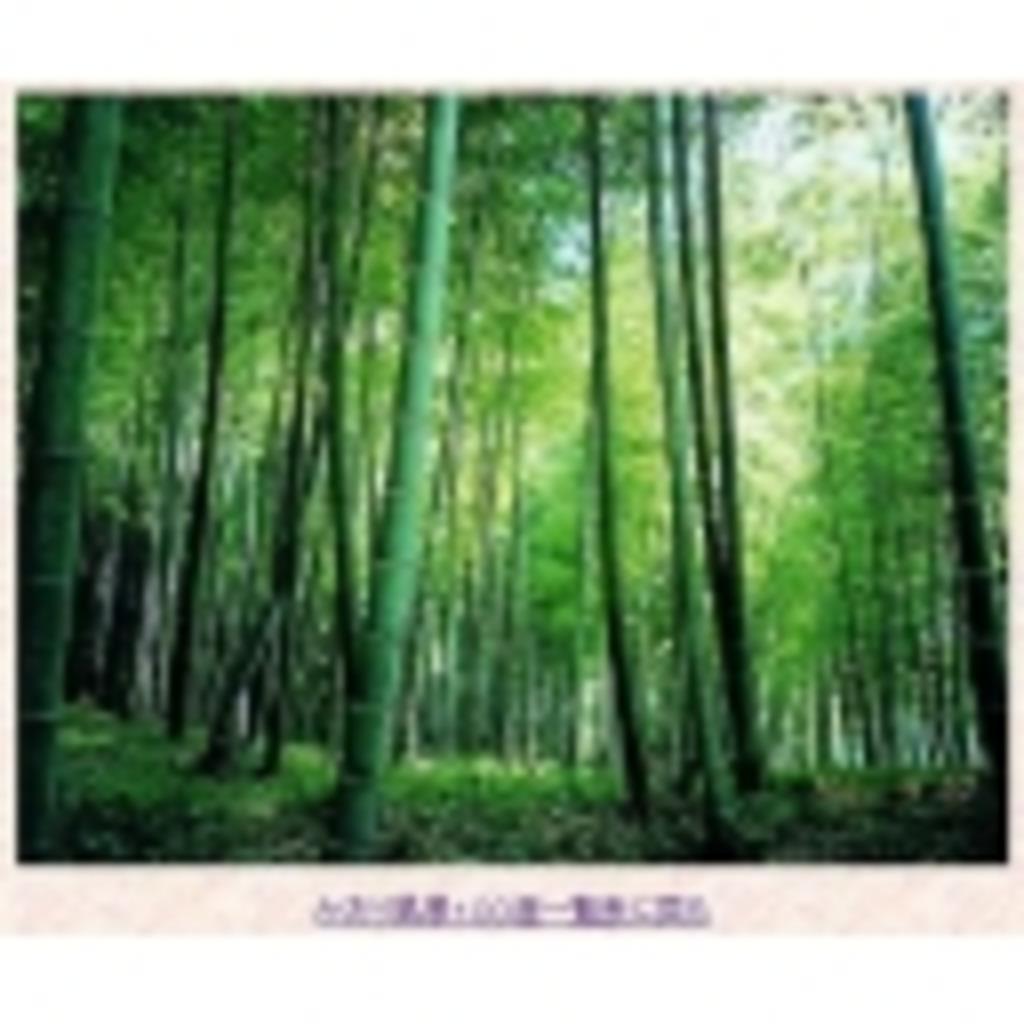 竹林.com―神谷ボイスで大阪弁―