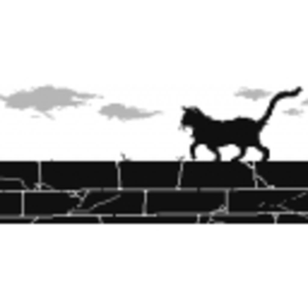 路地裏の黒猫