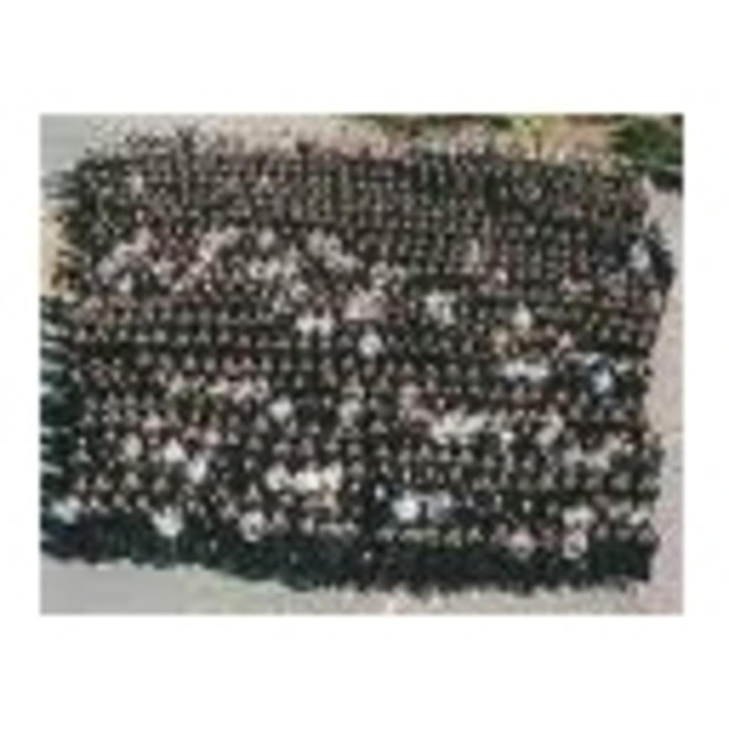 ニコニコ高等学校 1学年生主名簿