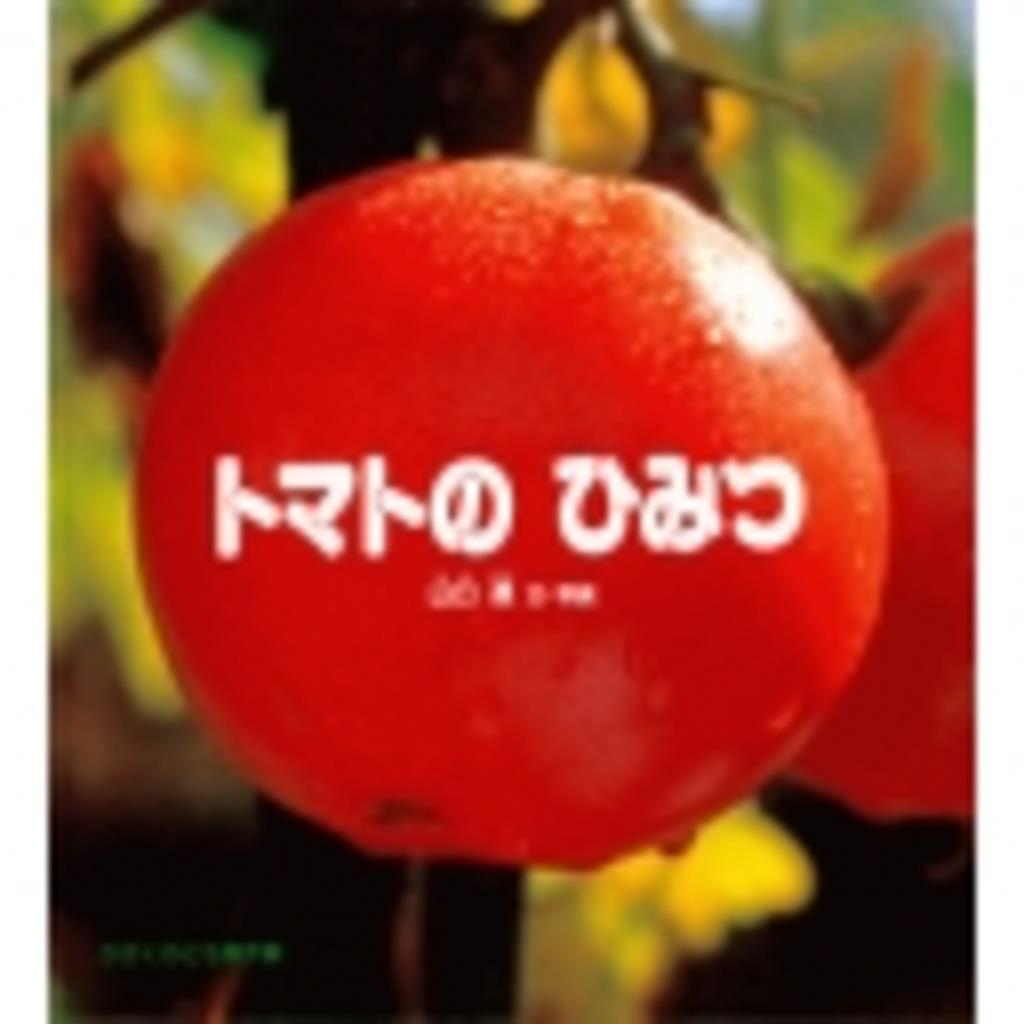 ☆トマト・イン・ワンダーランド☆