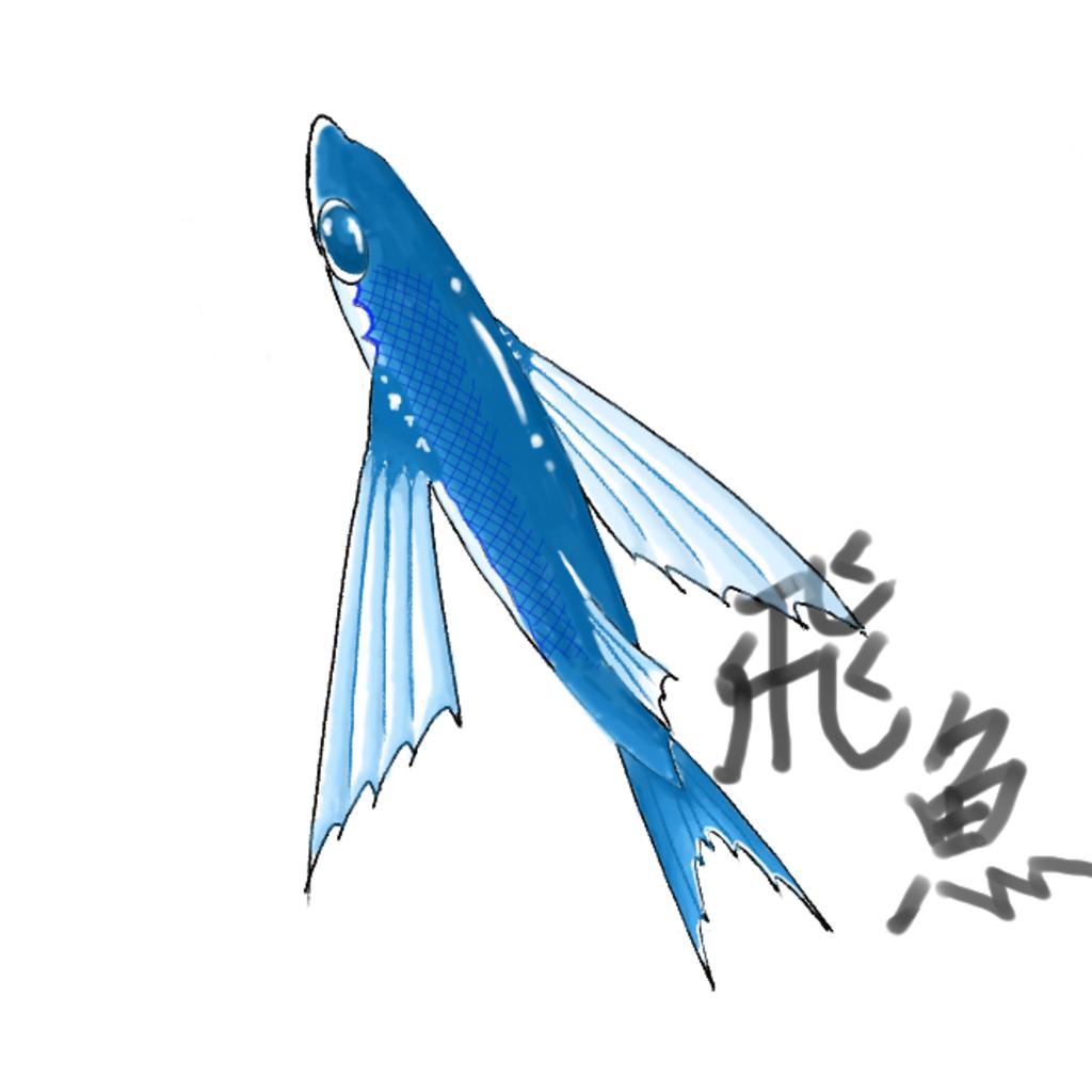 飛魚のジャンピングライフ