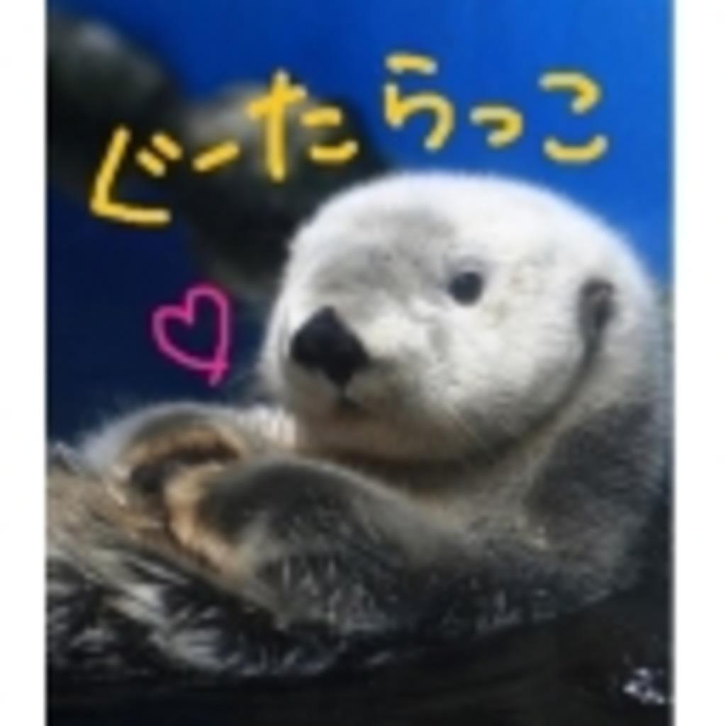 (^◇^)らっことむれようず☆