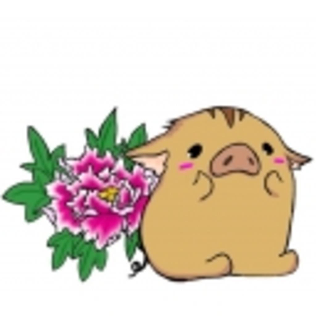 【神宿】歌うぼたんの鍋本舗