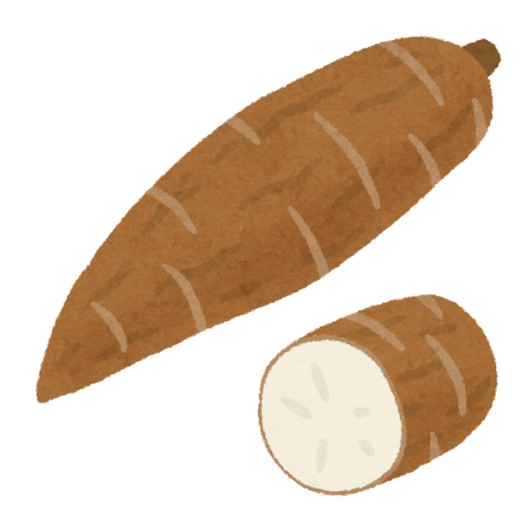 キャッサバ畑