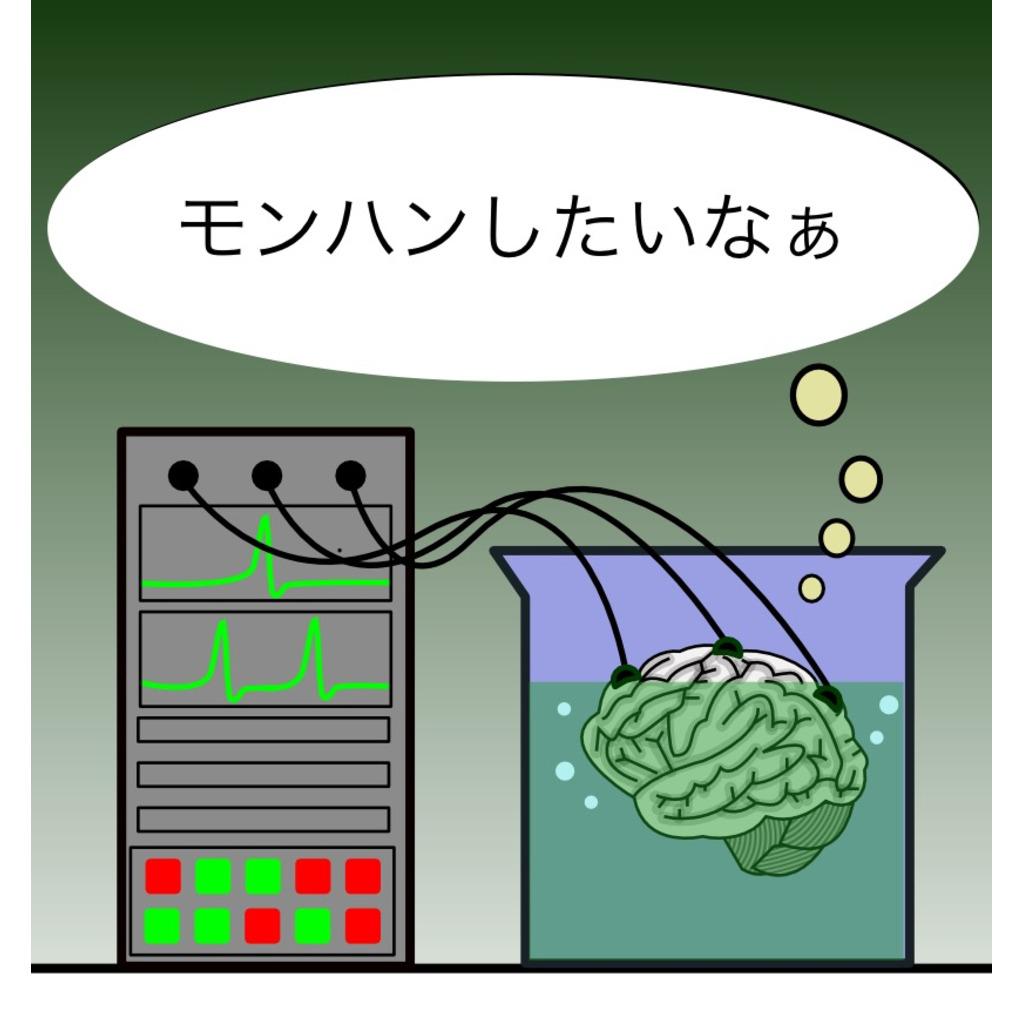 神島だいすこ倶楽部(仮)