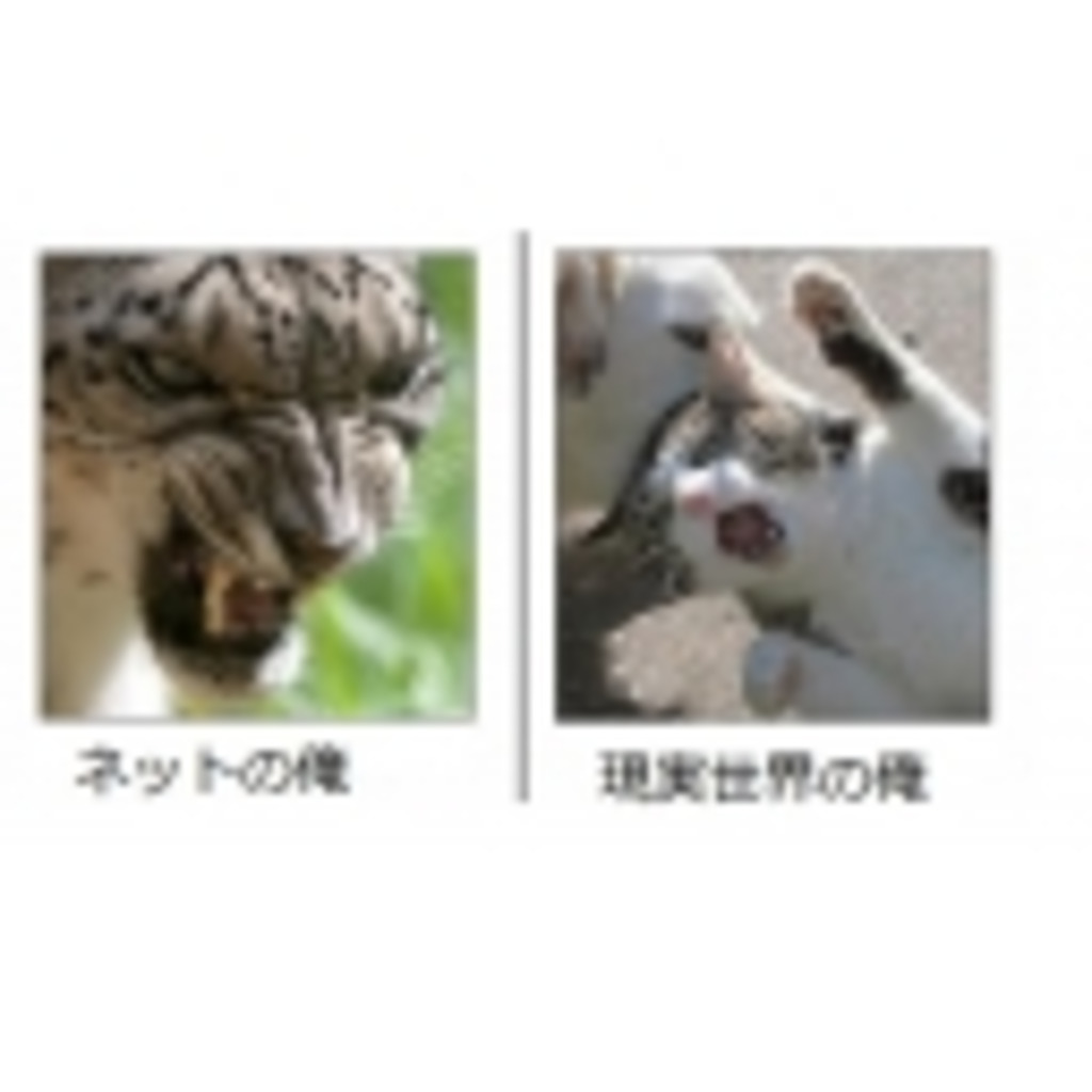 NHK ネトウヨ放送協会