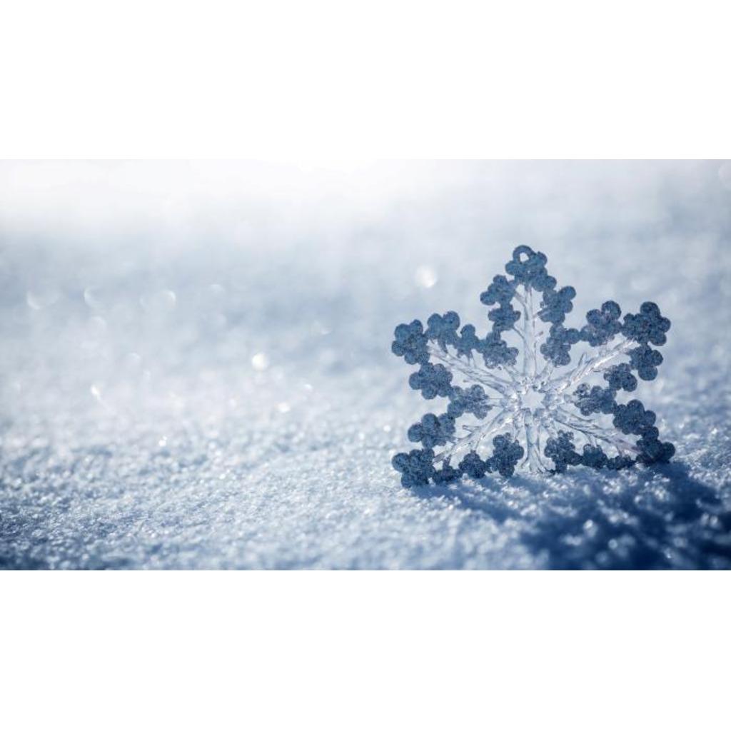 冬咲 はる-Fuyusaki コミュニティ