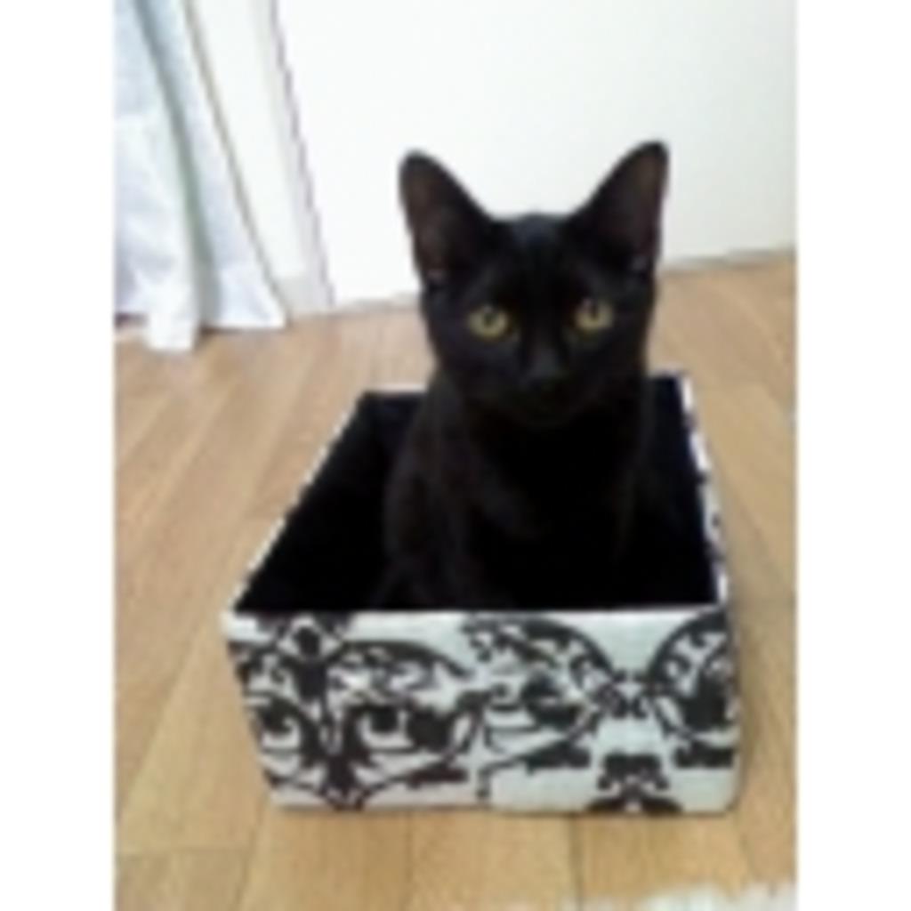 【粘土】ローテンション雑談@りく【黒猫】