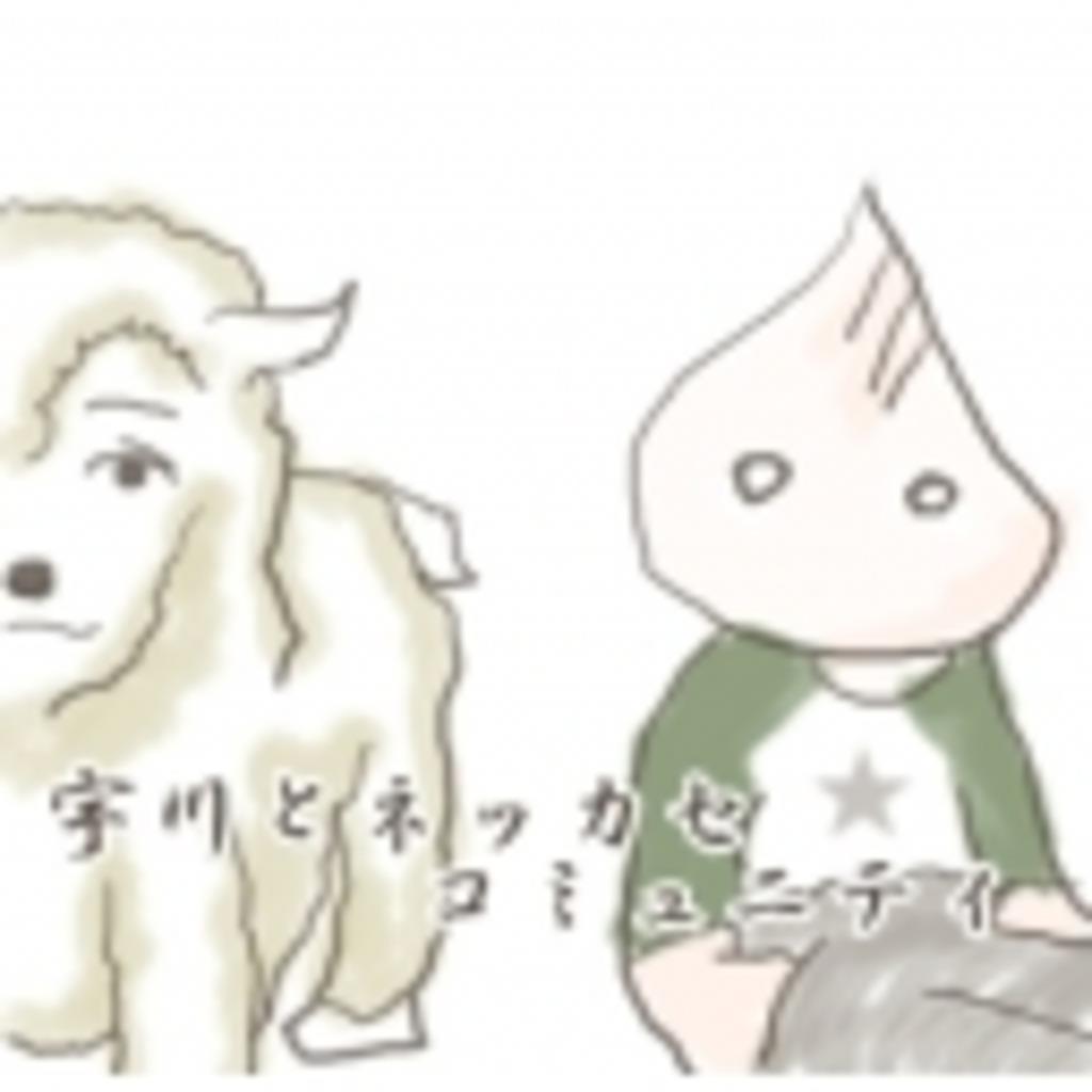 宇川とネッカコミュ