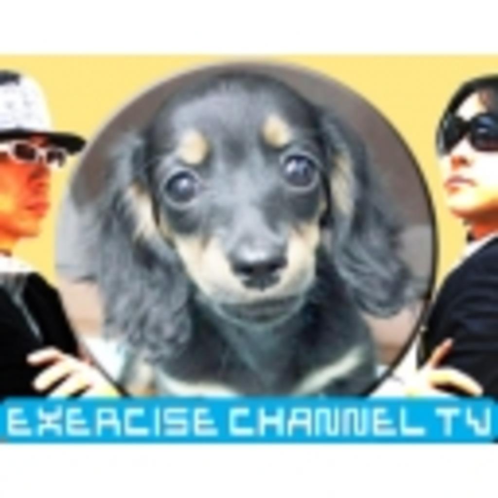 エクササイズチャンネルTV FM81.1