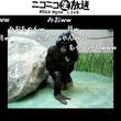 """声優の相沢舞さん、アニメ『日常』""""長野原みお""""の声でチンパンジーにアテレコ"""