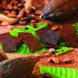[新商品] カカオの産地が異なる4種のチョコレートを食べくらべ。「ロイズオリジンチョコレート[カカオ70%]」が登場!
