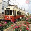 「都電バラ号」運行 レトロ車両をバラで装飾、沿線を盛り上げ 東京都交通局