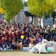 ゴミ拾いを競う「スポGOMIリスト杯」開催100回突破 アメリカ初上陸、ホノルルでリスト主催大会実施!