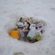 雪の中にゴミ・残飯… 雷鳥沢キャンプ場でのマナー違反に非難殺到「山を汚さないで!」「雷鳥などへの悪影響」