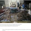 死んだゴンドウクジラの胃から80枚以上のゴミ袋 深刻な海洋汚染(タイ)