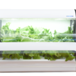 沖縄セルラーの家庭用水耕栽培キット「やさい物語」はカメラ機能も搭載