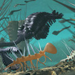 5億年前の「奇跡」なのか?意図的に仕組まれた古代生物「カンブリア爆発」の謎に迫る