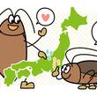 7月はゴキブリの最盛期!相談件数から割り出したゴキブリ実態調査が発表