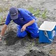 【鴨川シーワールド】台風12号の影響を考慮しアカウミガメの卵を保護7月6日より計4件391個のアカウミガメの卵 を「ウミガメの浜」に保護