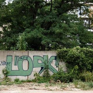 ベルリンの壁、新たに「発見」