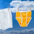 トランクス?ブリーフ?結局どっちが体にいいの?男性の下着問題に関する科学的研究(米研究)