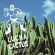 サボテンエキス(*1)で、男の乾いた肌に潤いを!闘う男の肌に「ルチャカクタス」を!サボテンから生まれたメンズコスメ『LUCHA CACTUS』誕生!