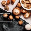 """秋は""""きのこ""""で乾杯!!松茸・ポルチーニ・トリュフなどを使用した""""菌力""""フレンチで秋の味覚を贅沢に堪能""""茸(きのこ)フェアー"""""""