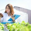 女性の自然科学系研究者の給料はどのくらいか
