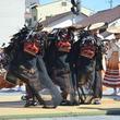 三年に一度!静岡県掛川市で「掛川大祭」が開かれる