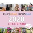 2020年の日めくりカレンダー「まいにちにゃんこ」と「まいにちわんこ」のフォト&エッセイをフェリシモが大募集!