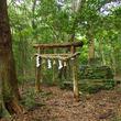 日本各地に点在する「禁足地」。「入ってはいけない場所」を巡る旅にようこそ!