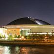 福岡ソフトバンクホークス、日本一おめでとう! 記念セールが福岡県内の商業施設で続々開催