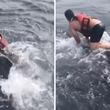 リアル・クジラに乗った青年。ロープが巻き付いて苦しむ大型のザトウクジラを救った漁師に賞賛の声