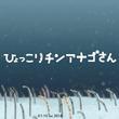 【すみだ水族館】「ゆらゆらチンアナゴまつり2018」 に新たな体験型アトラクション「ひょっこりチンアナゴさん」が登場