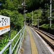 ダムが作り出した「秘境駅」 飯田線の山岳地帯に息づく物語を訪ねて